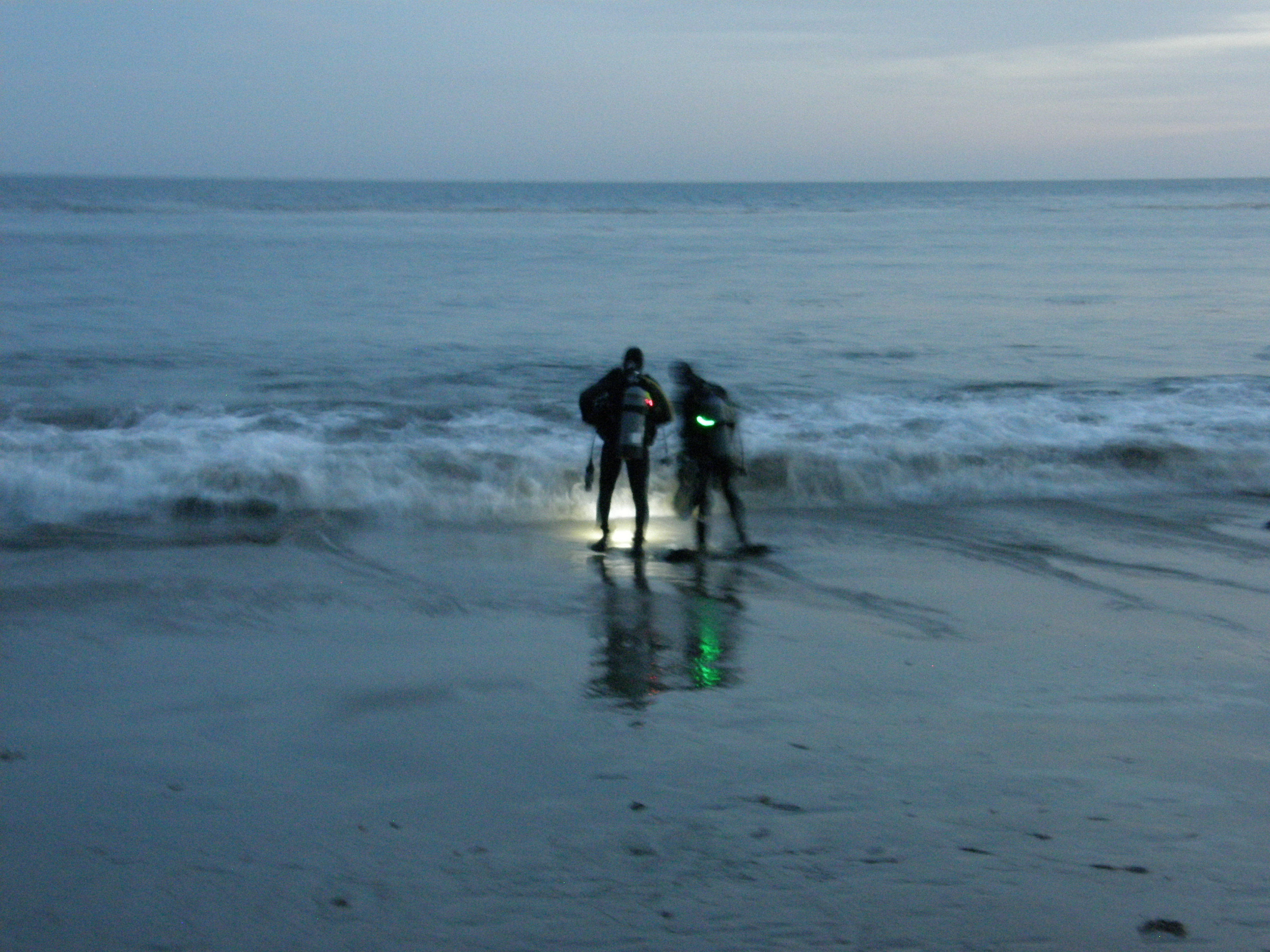 Night Dive at Corral Canyon Beach